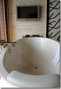 Ayada - bath television