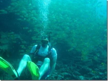 Bruce Lynn diving Maldives