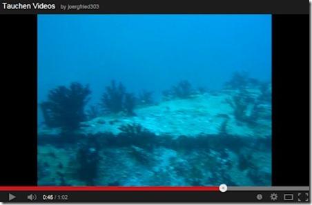 Chaaya Reef Ellaidhoo house reef wreck
