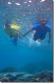 Coco Bodu Hithi snorkeling