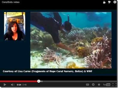 Coral Bots