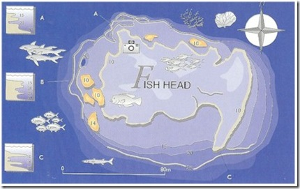 Fish Head Dive Site