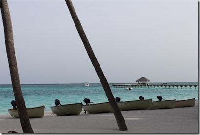 Gili Lankanfushi - motor boats