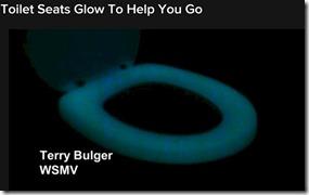 Glow toilet seat