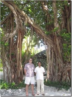 Hudhuranfushi banyan