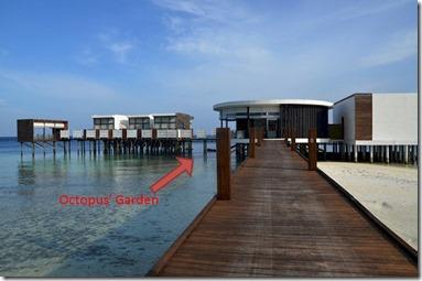 Jumeirah Dhevanafushi - octopus spot