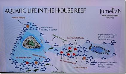 Jumeirah Dhevanafushi - reef plan
