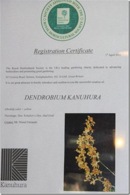 Kanuhura registration certificate