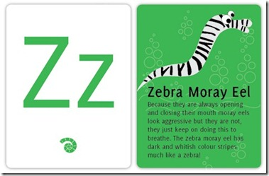 Kuramathi Kids Corner Zebra Moray Eel