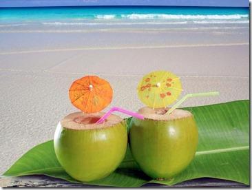 Kurumba - coconut