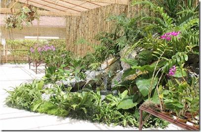 Kurumba orchid nursery 2