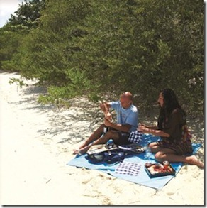 LUX Maldives picnic 2