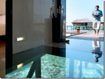 Lily Beach - entry glass floor