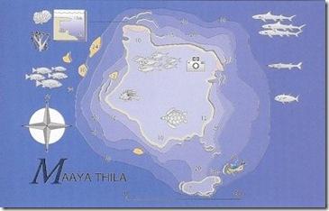 Maayaa Thila Dive Chart