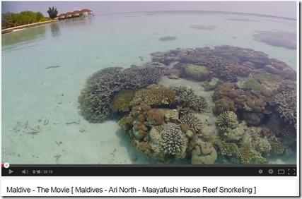 Maayafushi house reef video