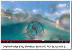 Maldives - Disney Dolphin plunge