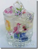 Maldives - flower ice cubes