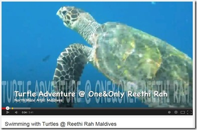 One and Only Reethi Rah Turtle Adventure