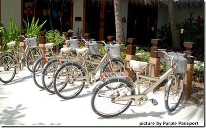 One and Only Reethi Rah bicycle homing service Purple Passport