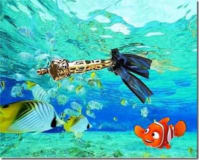 Oscar - snorkeling