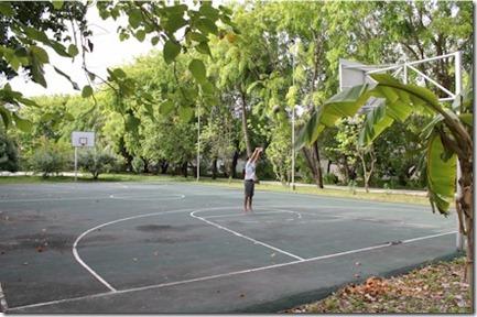 Paradise Island - basketball