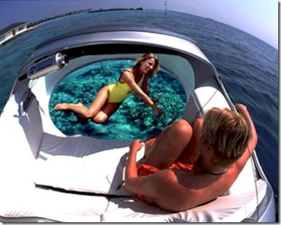 Paradise Island - glass bottom boat