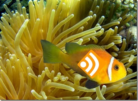 RSS clown fish