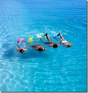 Snorkelling Four Seasons