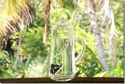 Soneva Fushi energized water pitcher