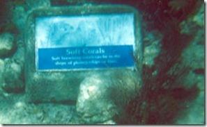 Underwater snorkel signs