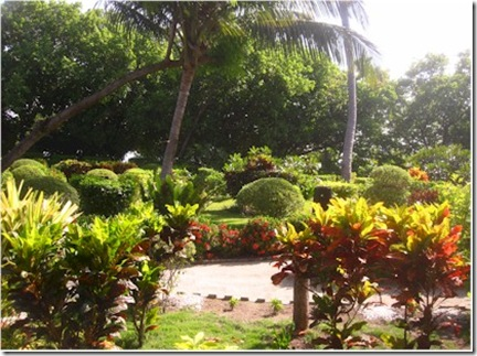 Vadoo garden 2