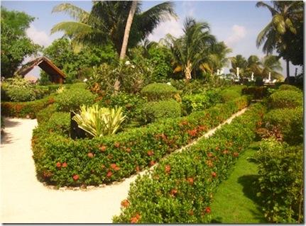Vadoo garden