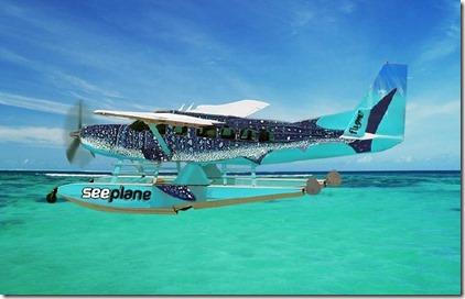 Villa Air Whaleshark plane