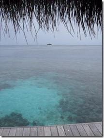 W Retreat ocean swim