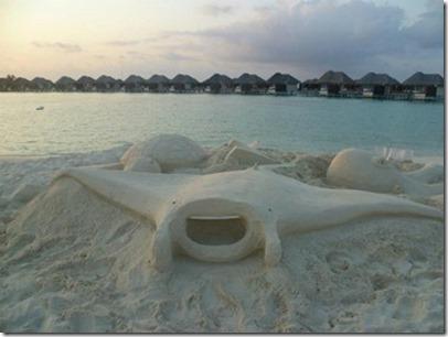 W Retreat sand manta
