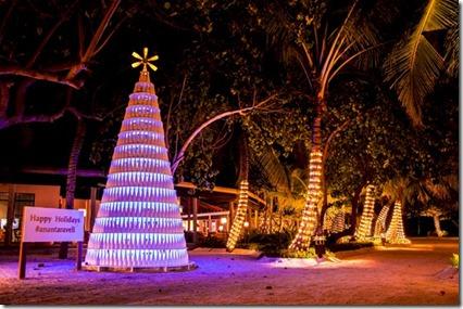 Anantara - recycled bottle Christmas tree