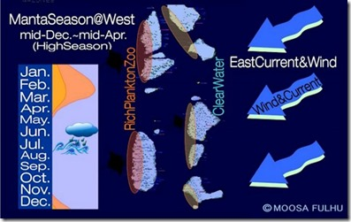Maldives season graphic 1