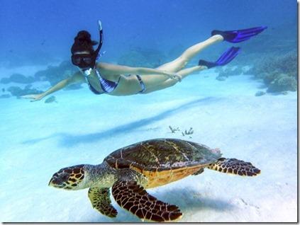 Rosie Londoner snorkeling