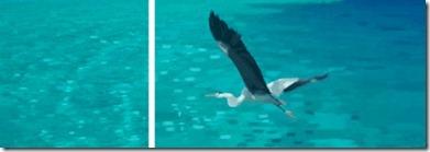 Hideaway Beach - Maldives art 3