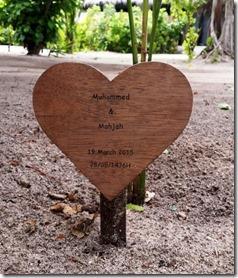 Sun Siyam Irufushi - tree planting 2