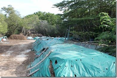 Soneva Fushi composting