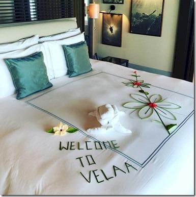 Velaa - bed 4