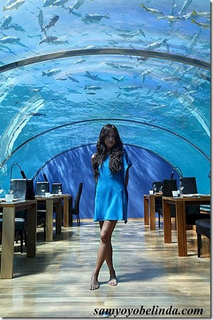 Conrad Rangali - Belinda Young underwater