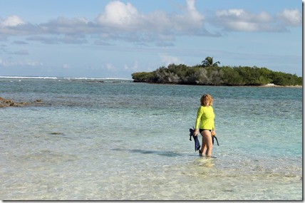 Canareef - snorkeling 3