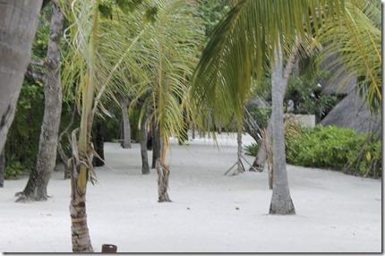 Cocoa Island - inner island