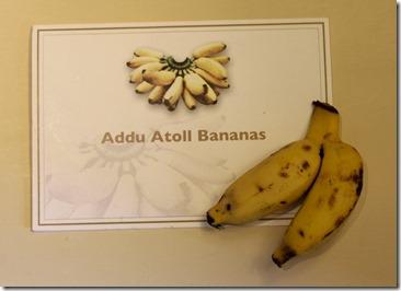 Shangri-La Villingili - Addu atoll bananas