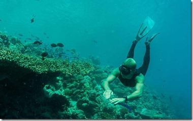 Dusit Thani - free diving