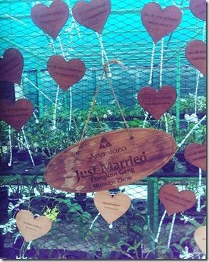 Anantara Veli - heart plaques