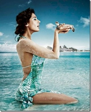 Four Seasons Kuda Huraa Nargis Fakhri turtle