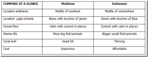 Maldives v Indonesia